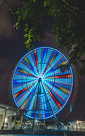The lockdown and the giant wheel of life